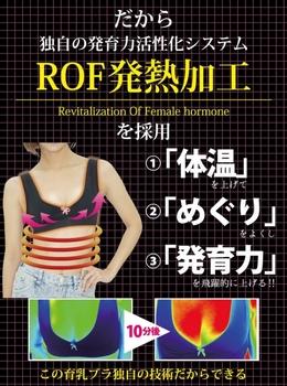 ROF.jpg